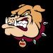 Stow-Munroe Falls City Schools logo